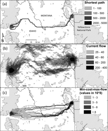 From Carroll C, BH McRae, and A Brookes. 2012. Use of linkage mapping and centrality analysis across habitat gradients to conserve connectivity of gray wolf populations in western North America. Conservation Biology 26(1): 78-87.