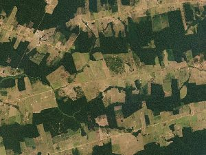 Forest_and_Fields,_Rondônia,_Brazil_by_Planet_Labs