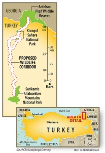 Turkeys-first-wildlife-corridor
