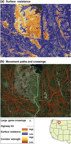 From Languth, EL, BK Hand, J Glassy, SA Cushman, and MA Sawaya. 2011. UNICOR: a species connectivity and corridor network simulator. Ecography 35(1): 9-14.