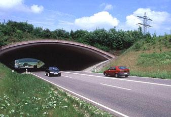 corridor_overpass