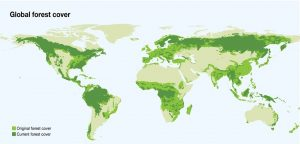 global_forest_cover_UNEP_WCMC