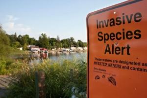 invasive_species_sign