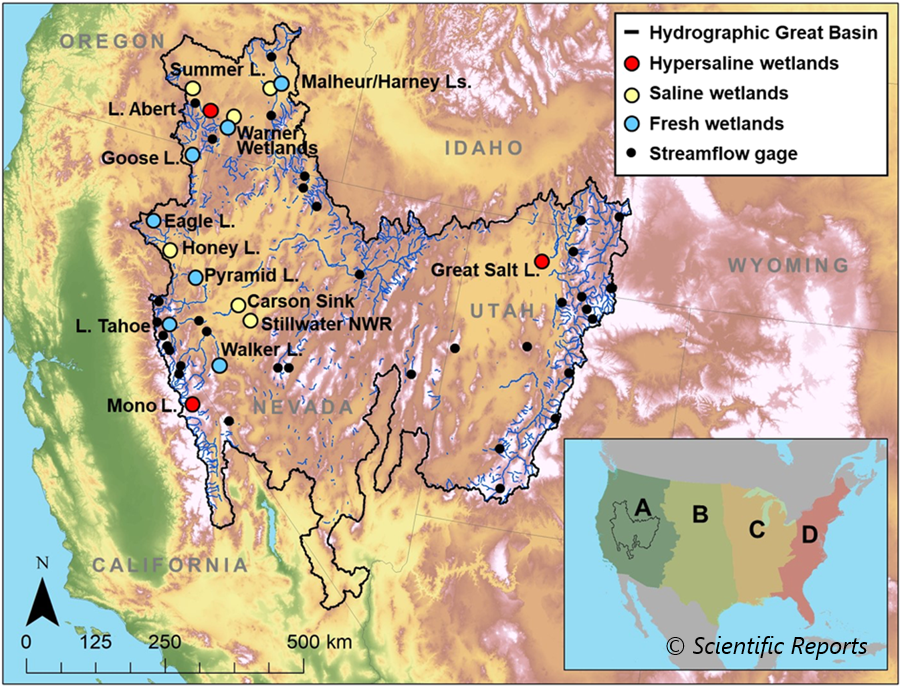 Climate Change Threatens Migratory Connectivity In The Us Great - Great-basin-on-us-map