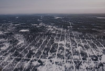 Seismic line patterns in Alberta's oil sands region