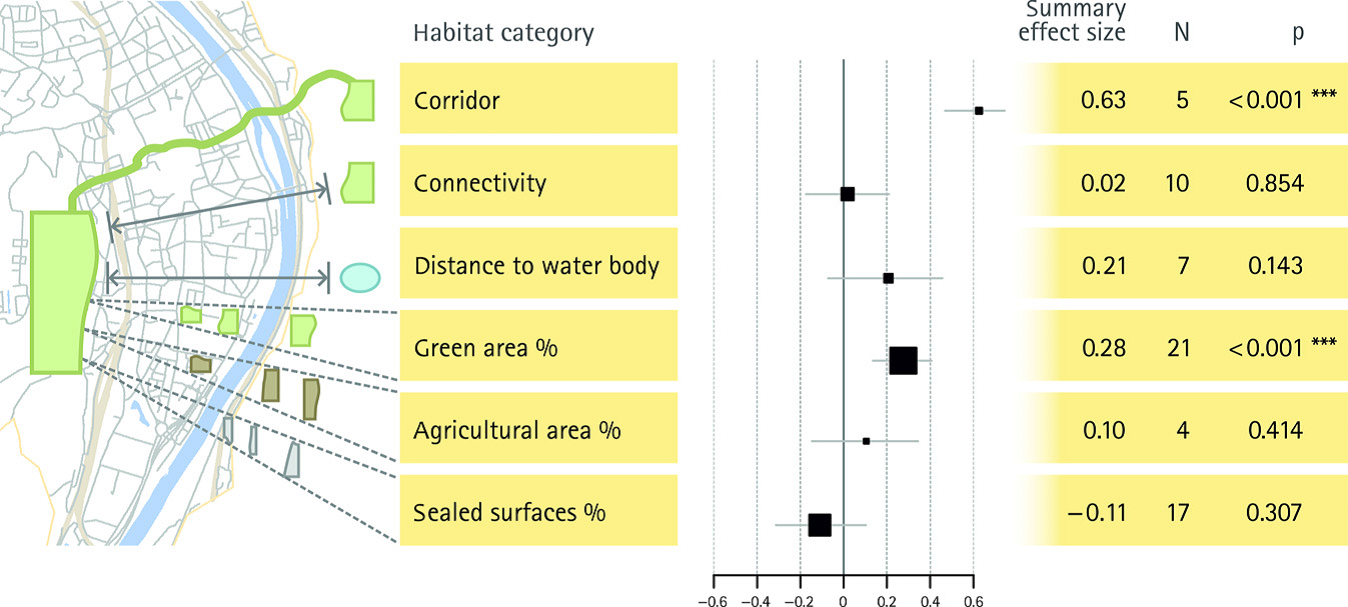 relationship between species diversity and area